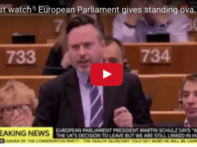 A must watch – European Parliament gives standing ovation to Scotland