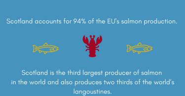 Scotland the Brief, Salmon Production