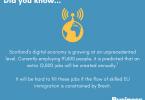 Scotland's Digital Technology Sector